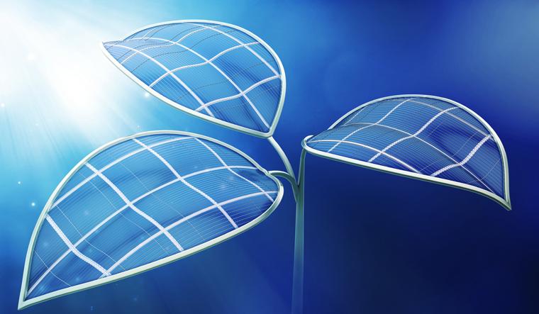 Inovação: cientistas produzem gás verde através de folhas artificiais alimentadas com luz solar